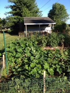 garden6-16-12b