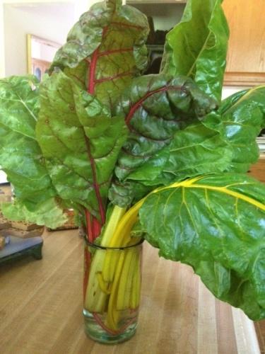 vegetablegumbo1